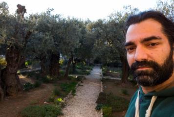 Palästina Jerusalem Ölgarten der Todesangst Jesus
